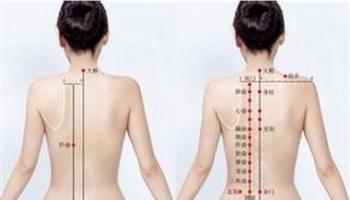 中医针灸基础-百症赋